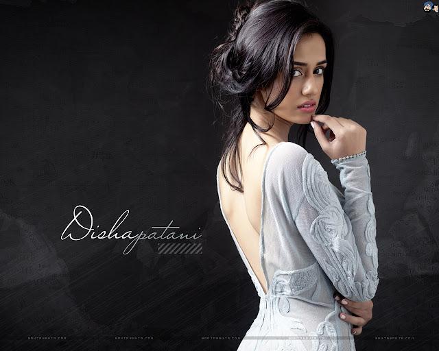 Disha Patani HD Wallpaper