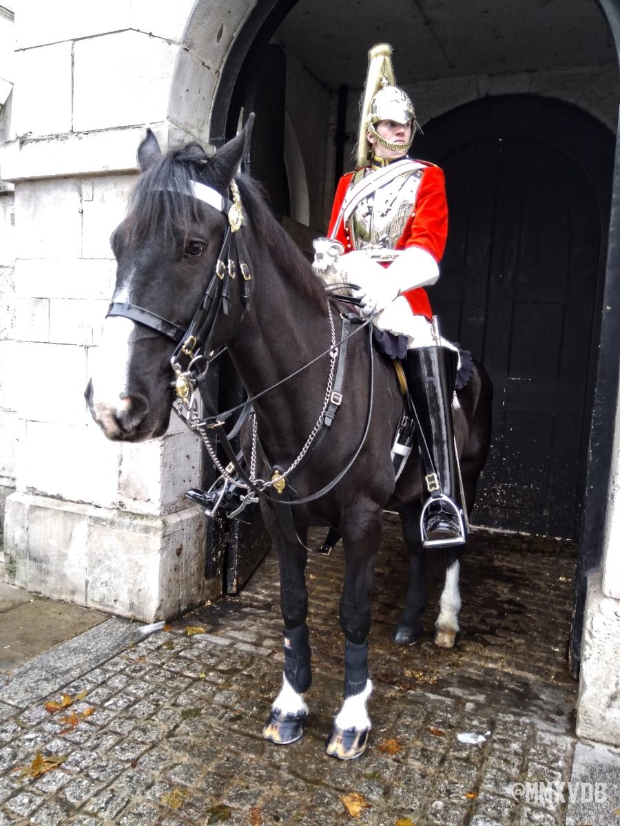Horse Guard, London