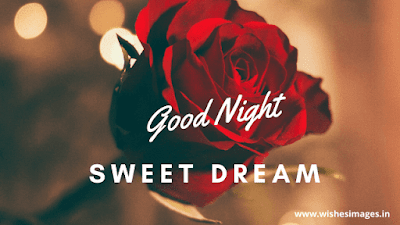 good night rose image