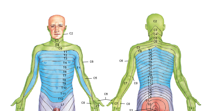 El dibujo sensitivo y expresivo de la figura humana cfnm - 3 10