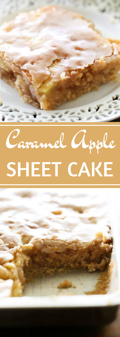Caramel Apple Sheet Cake #desserts #cakes #apple #caramel #pumpkin