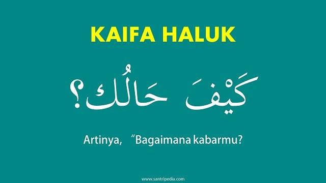 Kaifa Haluk? Bahasa Arab Apa Kabar - Arti dan Cara Menjawabnya