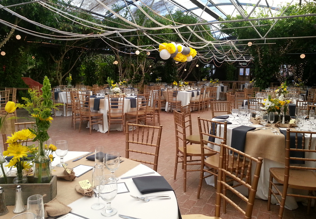 Boojum Tree Hidden Garden Wedding Venues