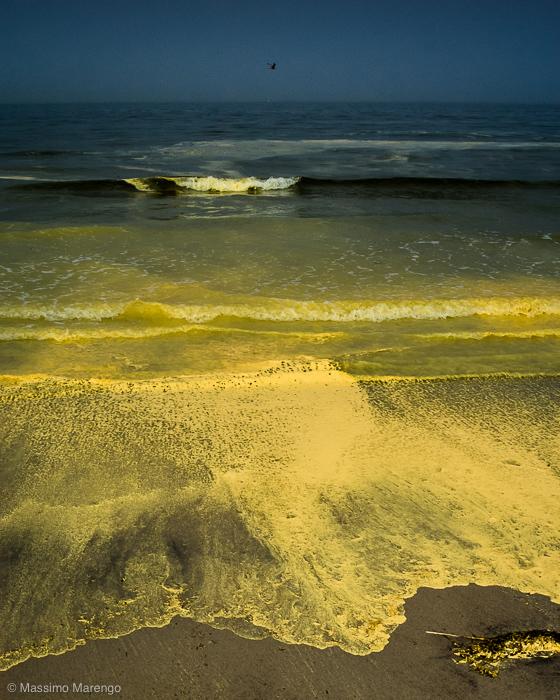 Massimo's Photoblog: Yellow Sea