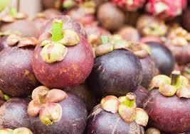 manfaat buah manggis bagi kesehatan tubuh