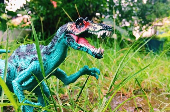 brinquedo dinossauro fotoGrafia