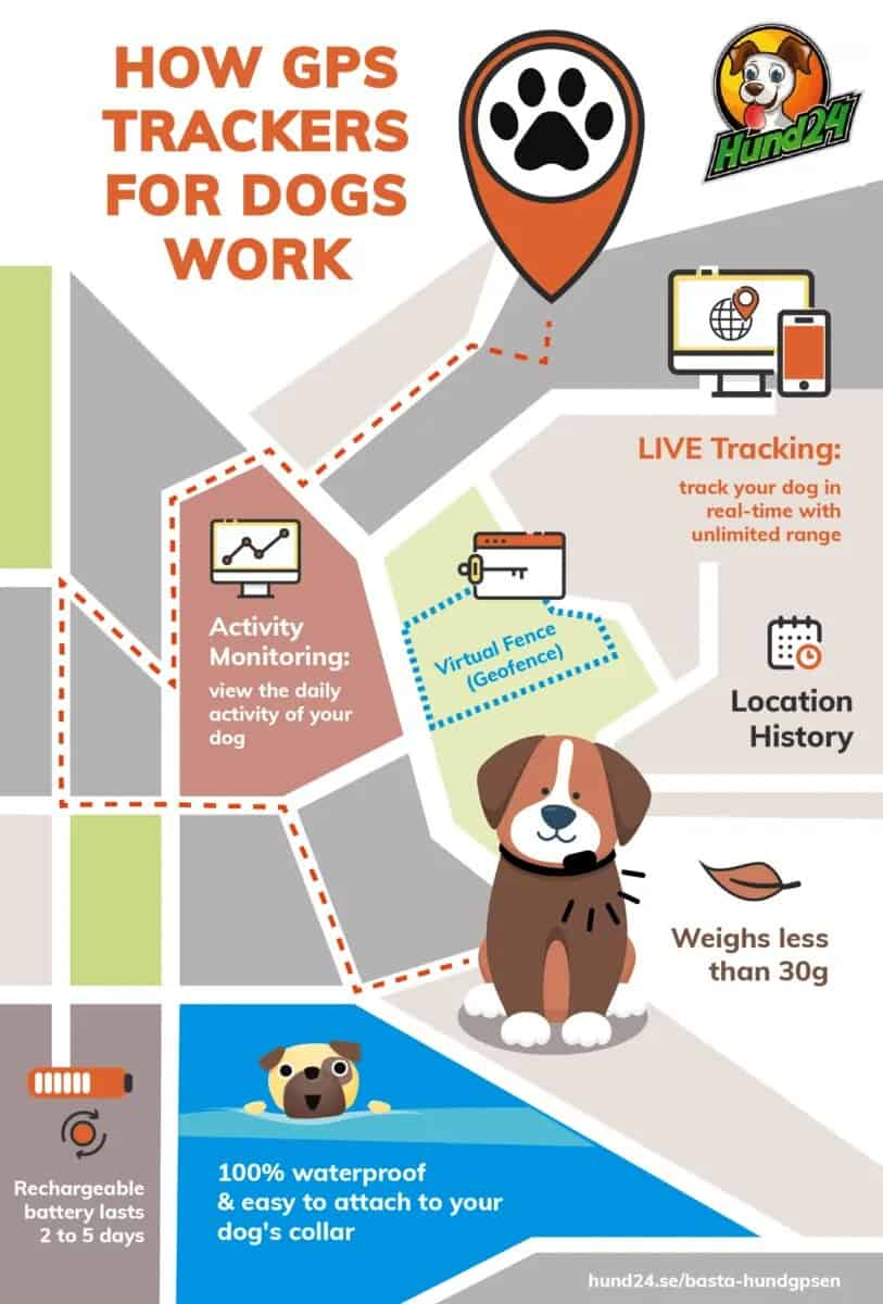 How GPS Trackers for Dogs Work #infographic