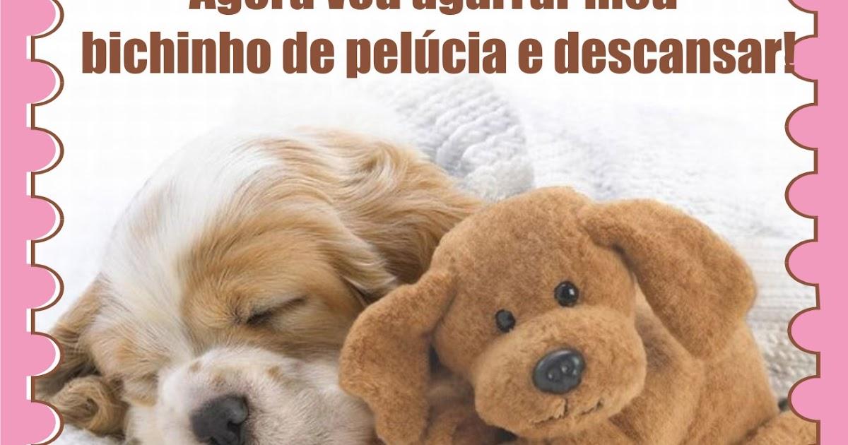 Chambolinho Recadinho De Boa Noite Pra Facebook: Boa Noite Facebook Bichinho De Pelúcia