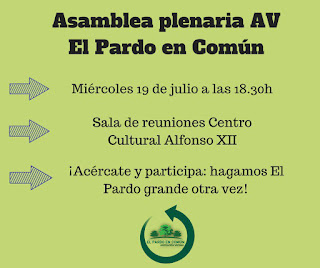 cartel Asamblea plenaria AV El Pardo en Común