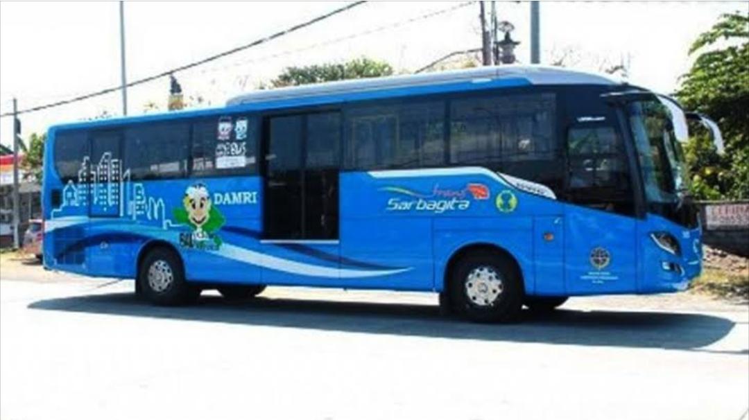 Trans Sarbagita Bali, Transportasi Umum Sarbagita Bali