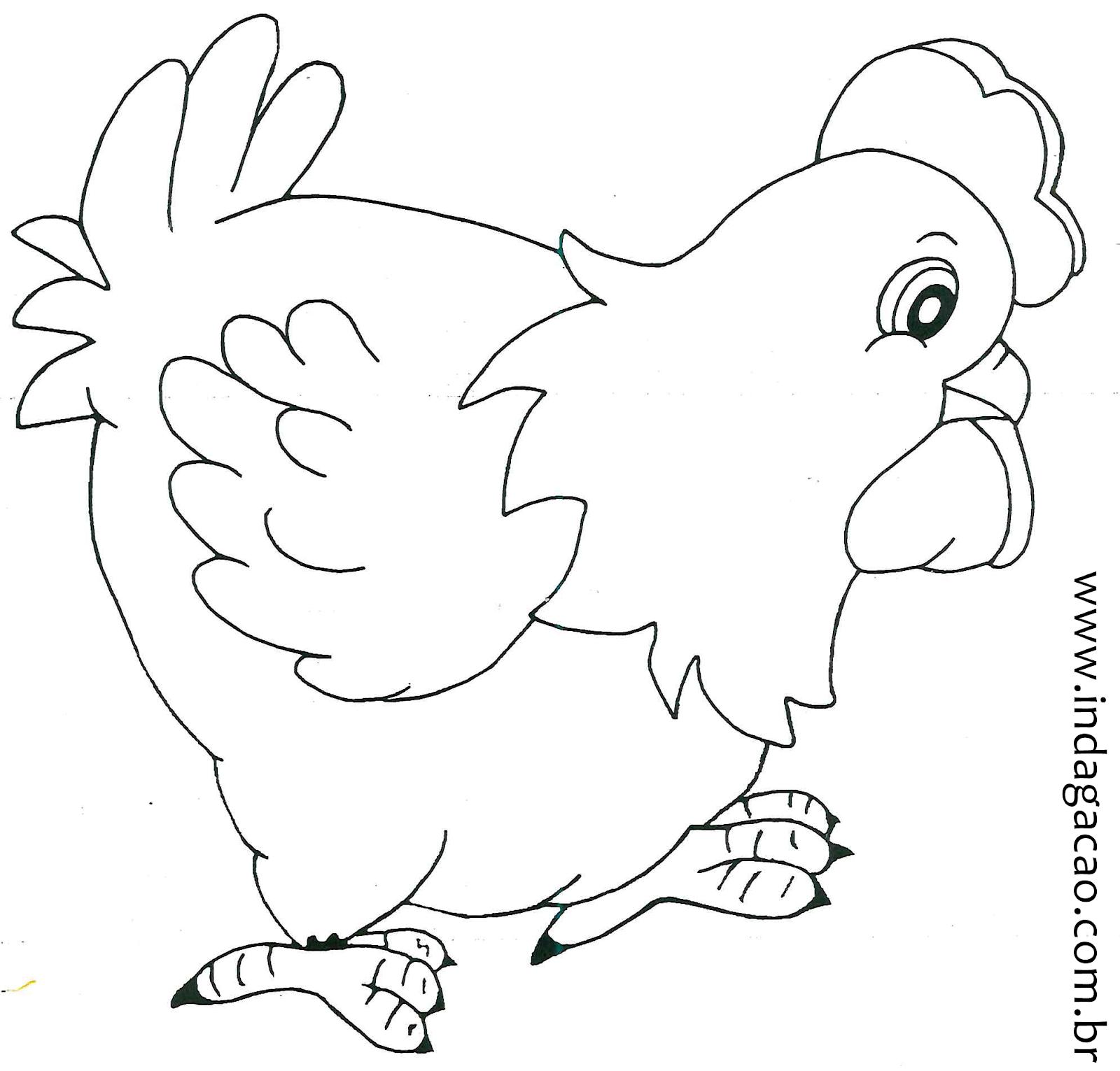 desenho da galinha para colorir na escola indagação