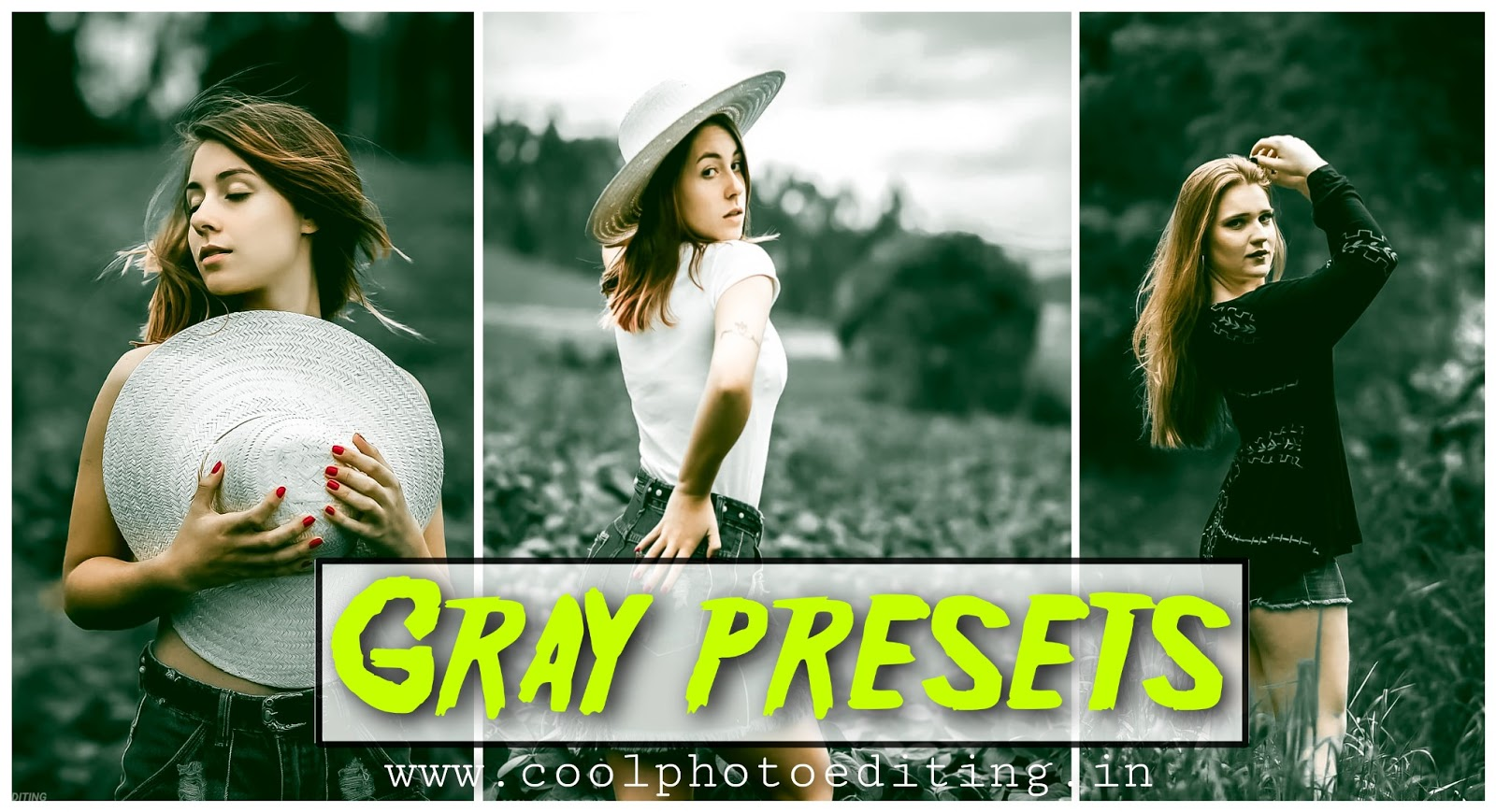 Gray Tone Presets Free Download / Lightroom PResets