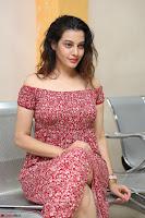 Diksha Panth in a Deep neck Short dress at Maya Mall pre release function ~ Celebrities Exclusive Galleries 107.JPG