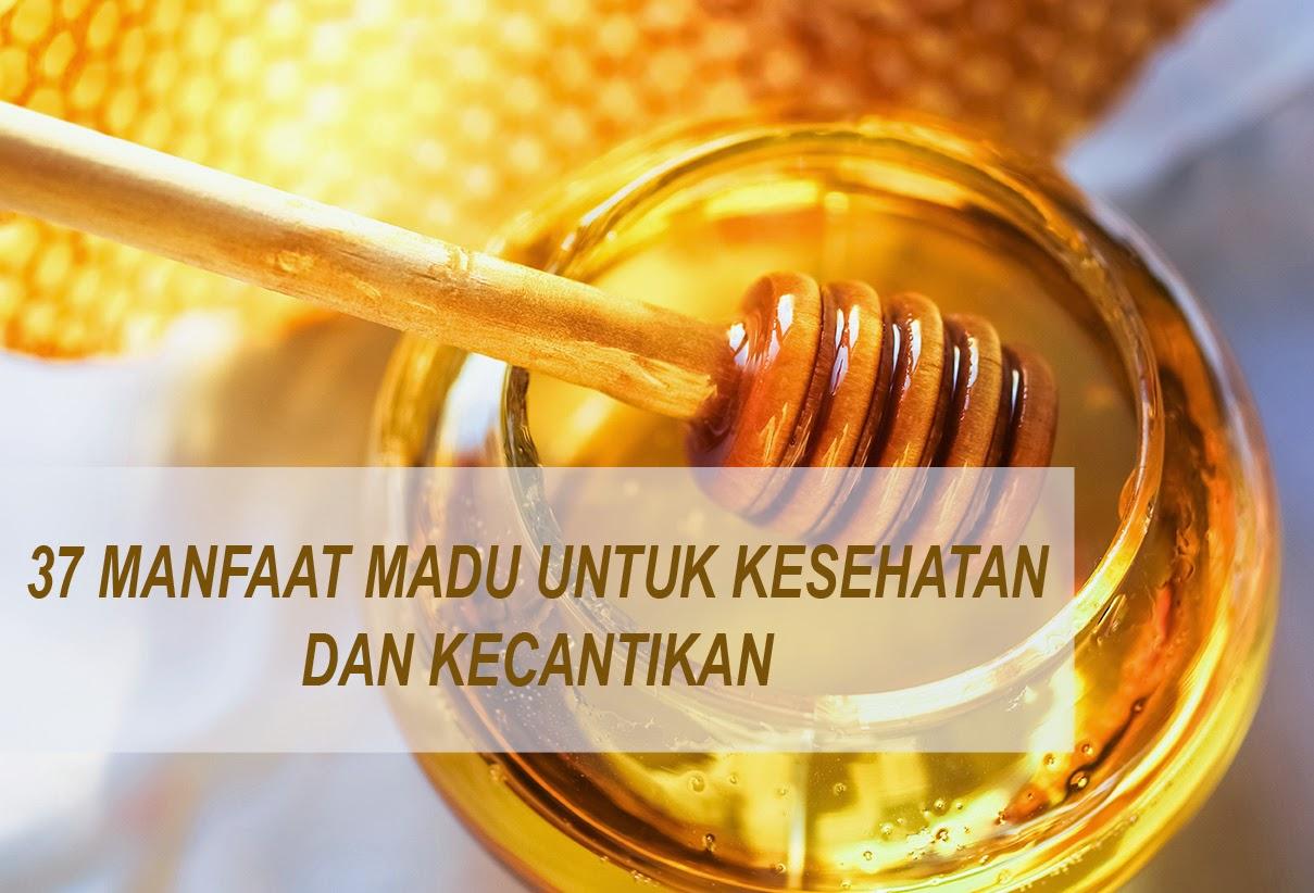 Pernahkan anda mendengar bahwa madu merupakan salah satu keajaiban dari ilahi bisa menja 37 Manfaat Madu bagi Kesehatan dan Kecantikan