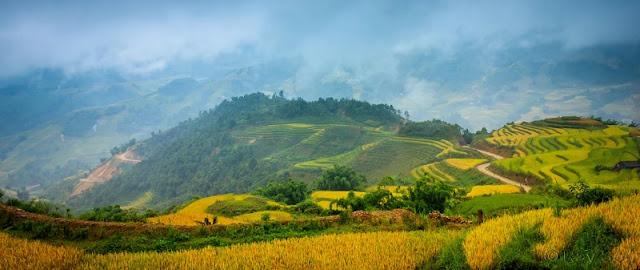 Visiting Vietnam? Insiders Share Tips 3