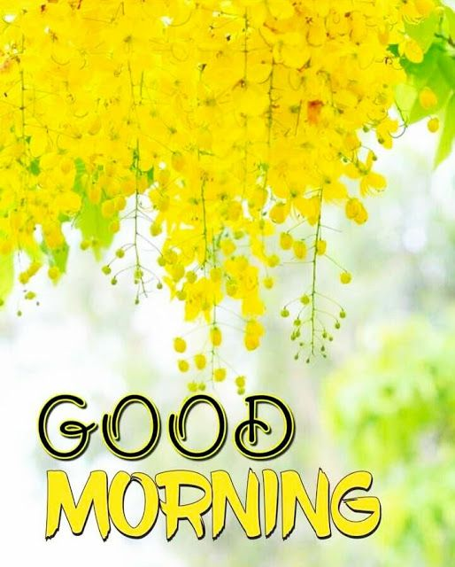 Daily Morning Quotes, wishes & Messages, Good Morning Inspiration and Have A Nice Day wishes for him and her