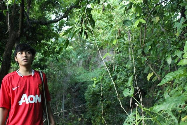 areal hutan sekitar goa monyet kupang NTT