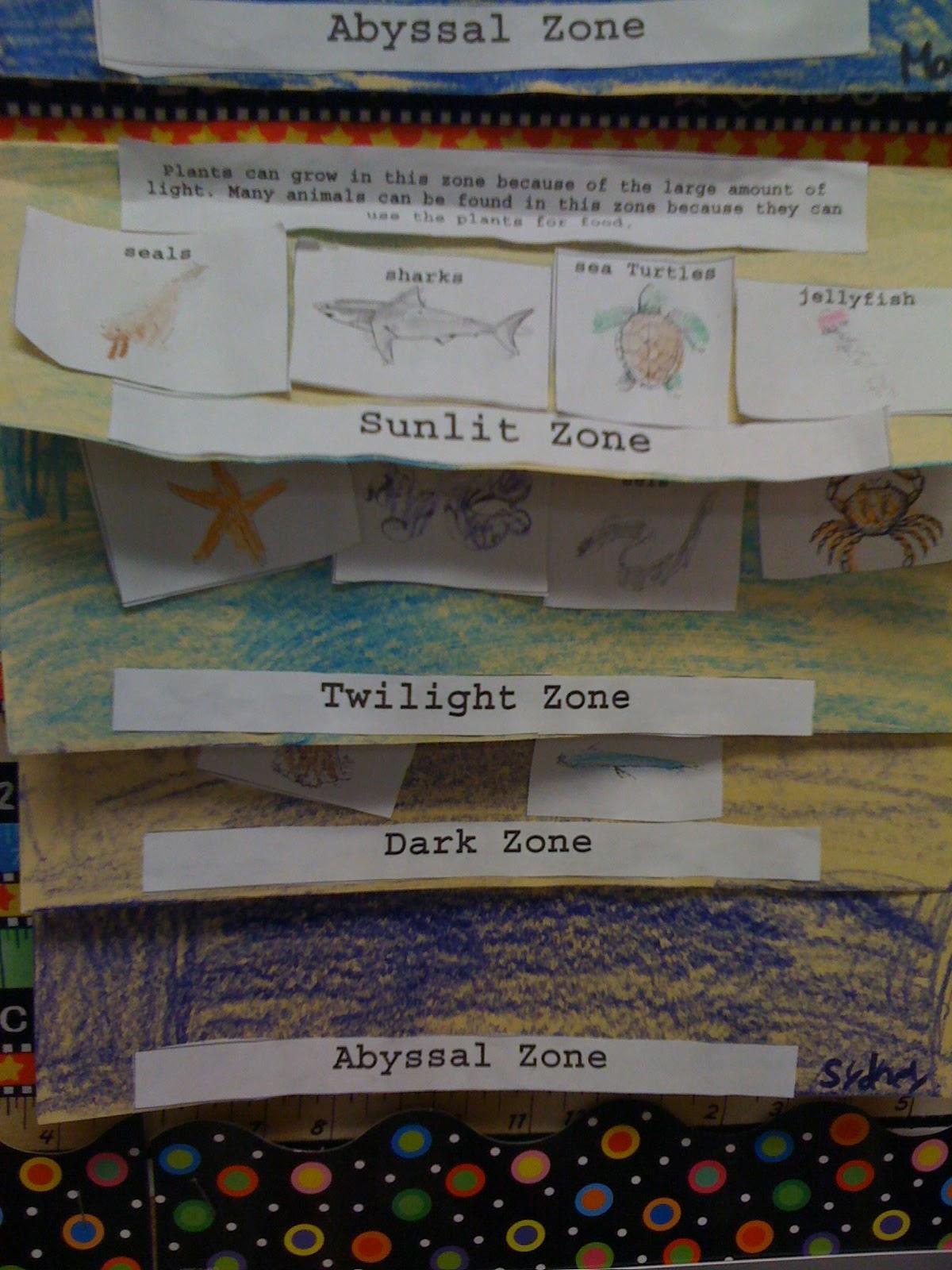 Bishop S Blackboard An Elementary Education Blog Ocean Zones Foldable