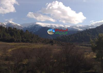 جبل شيليا
