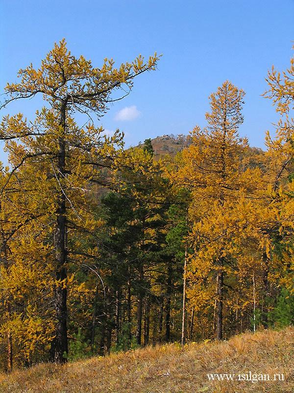 Гора Сугомак. Челябинская область.
