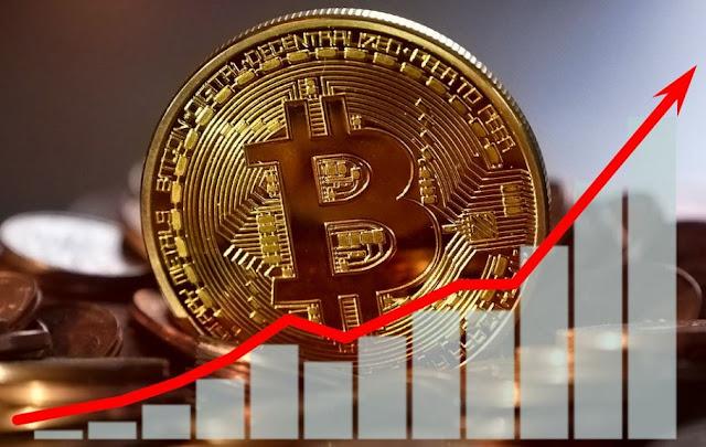 tracking growth of bitcoin price profitability btc