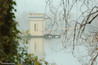 Detall de l'estany de Banyoles