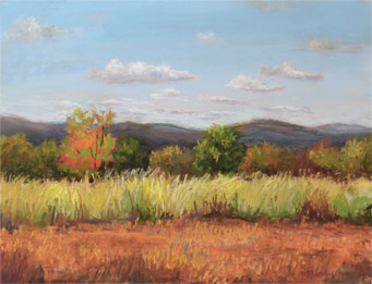 Autumn Complements, 9x12 inches, En Plein Air