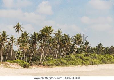Benaulim Beach, Goa, India.