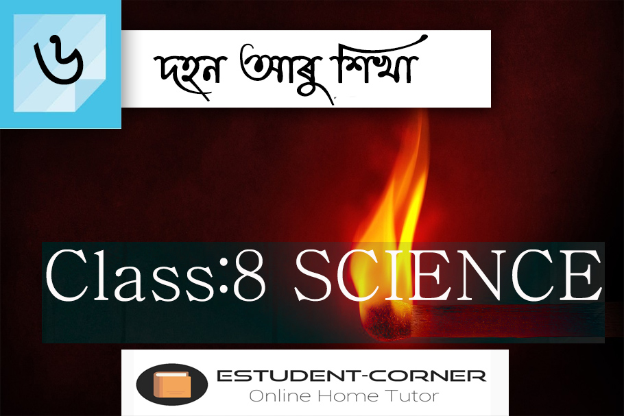 Class 8 || SCIENCE || Lesson 6 || দহন আৰু শিখা || Textbook Questions and Answers