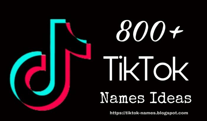 Tiktok Names 800 Best Tiktok Username Ideas Tiktok Names Tiktok Names