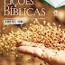 Revista Lições Bíblicas Professor 4º Tr. de 2018