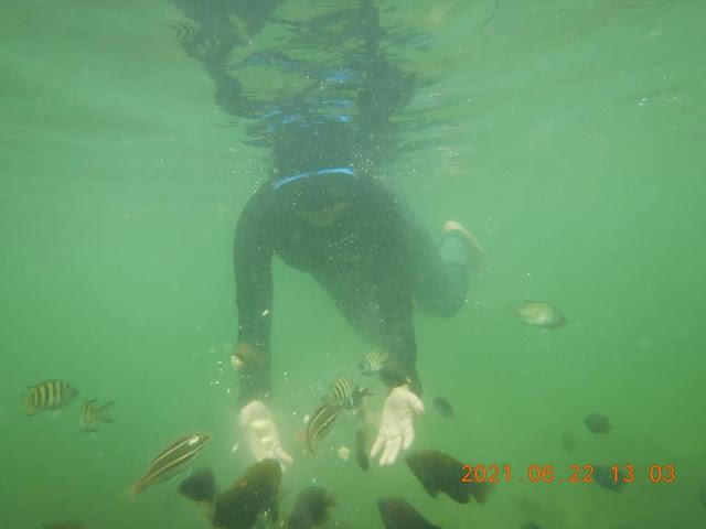 Bertemu Banyak Ikan di Pulau Labun