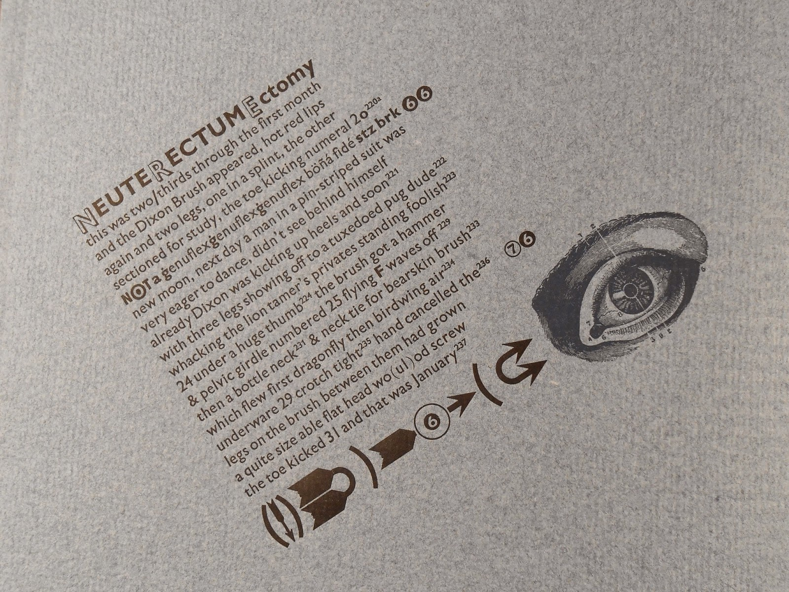 A page bearing an angled block of text and an image of eye.