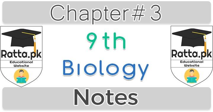 9th Biology Chapter 3 Biodiversity Notes - Ratta pk