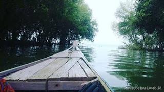 Akses Hutan Mangrove Muara Beting dengan perahu