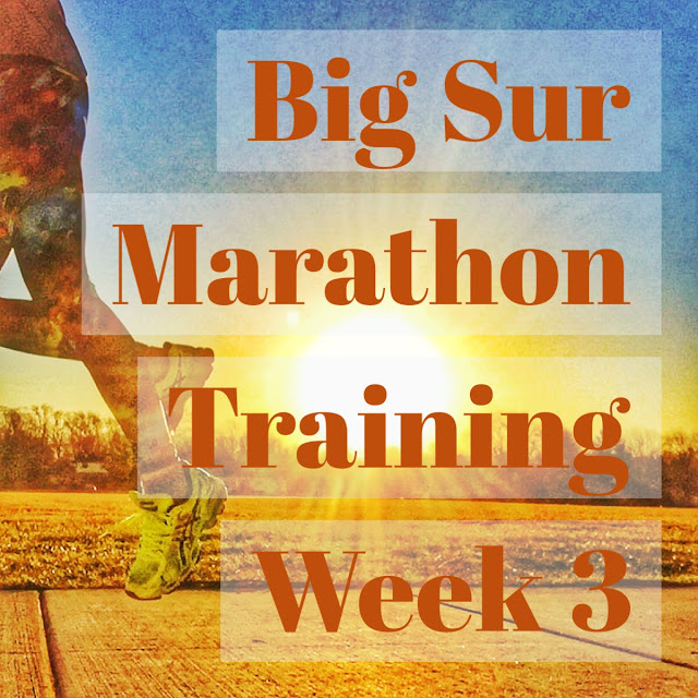 Big Sur Marathon Training Week 3