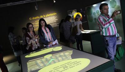 Oleoturismo Terra Oleum - Museo Activo del Aceite y la Sostenibilidad