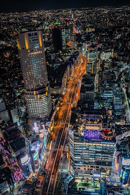 セルリアン,フクラス,渋谷