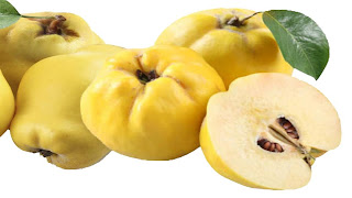 quince fruit images wallpaper