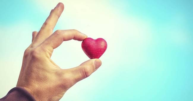 makanan untuk kesehatan organ hati