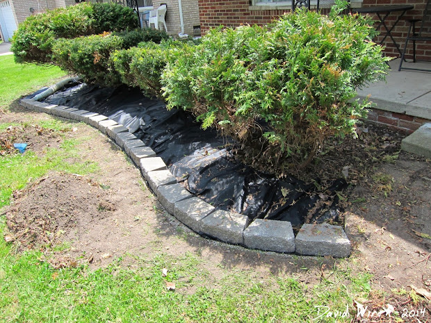 25+ Decorative Landscape Blocks Lowes Pictures and Ideas on