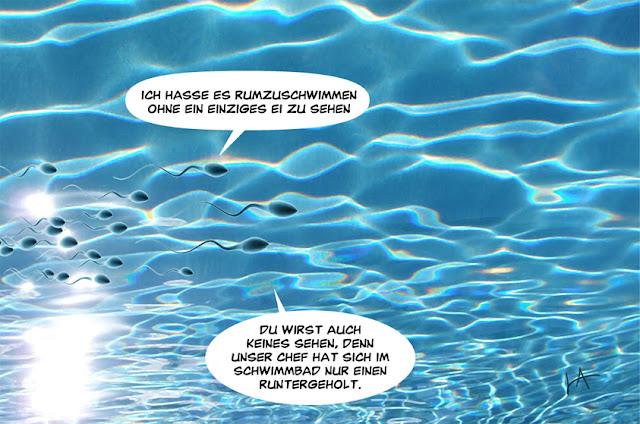 Tagesfisch: Schwimmbad