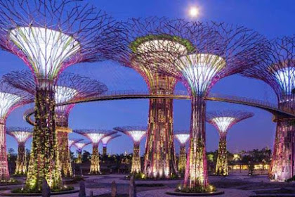 3 Area Taman dan Harga Tiket Gardens by The Bay