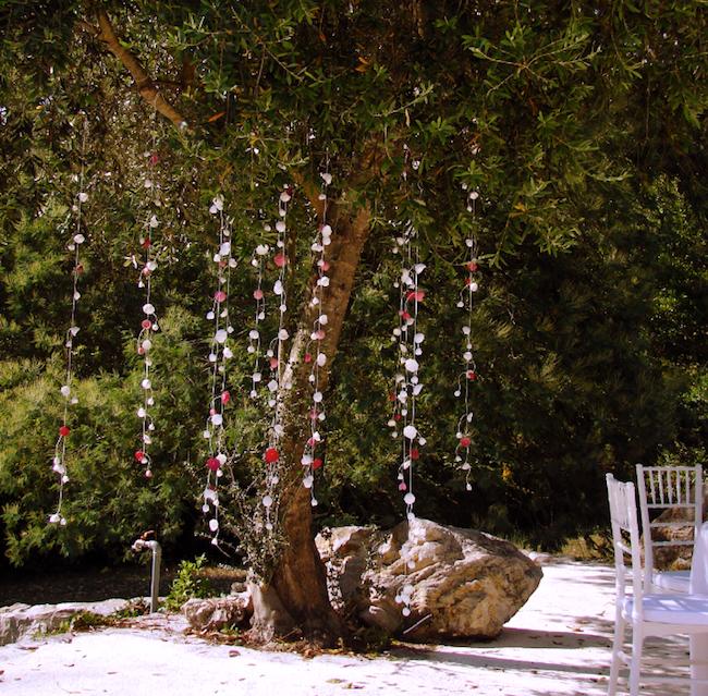 Matrimonio In Un Bosco : Eco wedding design luglio