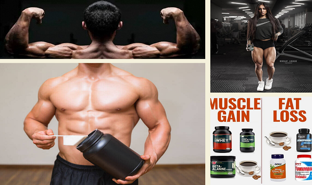 Which Supplements you NEED to Take to Gain Muscle and Lose Fat