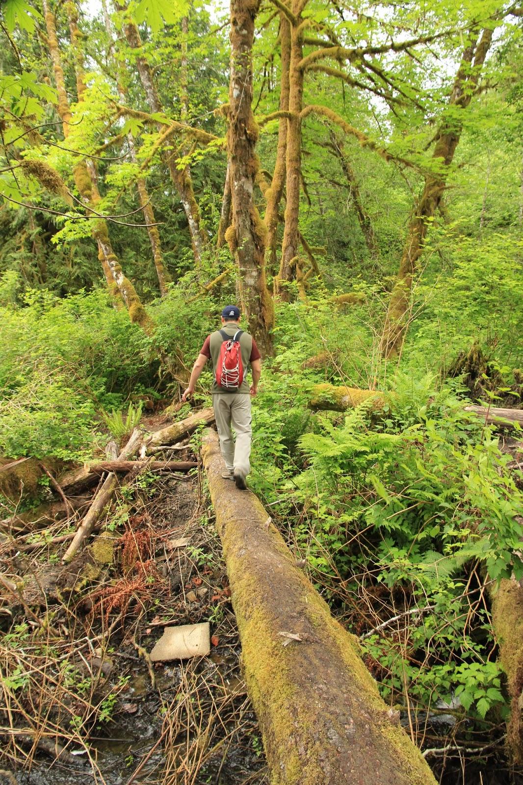 Explorations Of Jackie Amp Joe Old Robe Canyon Trail
