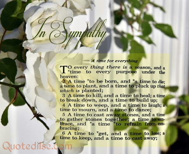 sympathy quotes in english