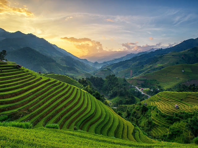 Mù -Cang- Chải- Vietnam