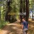 Hutan Pinus Bonto-Bonto Maros Camping Ground Masa Depan di Kabupaten Maros