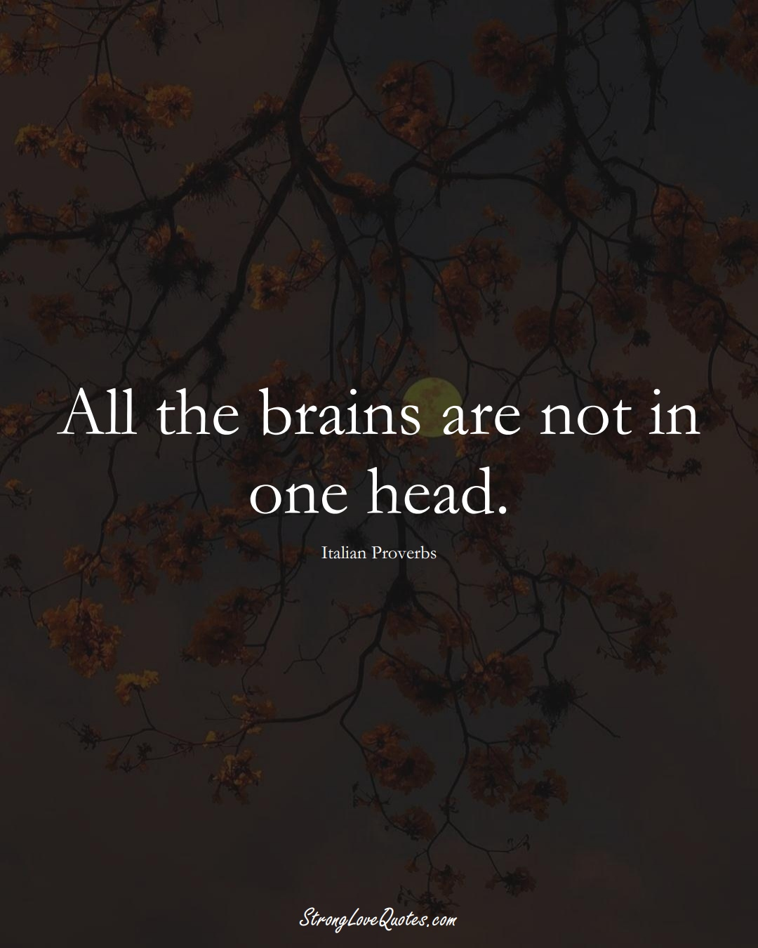 All the brains are not in one head. (Italian Sayings);  #EuropeanSayings